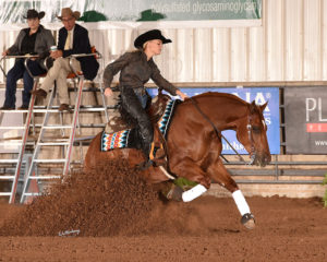 The Judges Evaluation and Education Program is in place to help further educate NRHA judges beyond the annual schools.